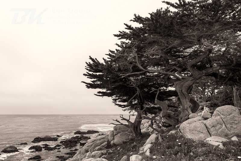 Monterey, California on May 23, 2014.  Photo by Ben Krause